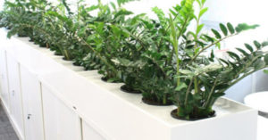 Workplace Plant Hire