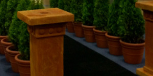 Planter Containers