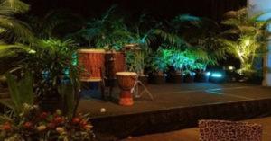 Sunshine Coast Event Plant Hire