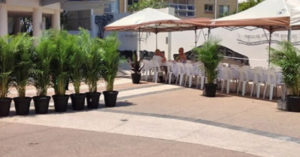 Short Term Plant Hire for Events