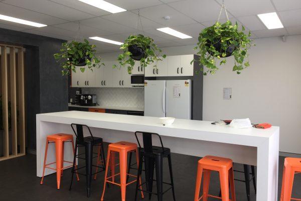 indoor plant hire sunshine coast - buy office plants