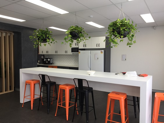 Plant hire Caloundra - Office Plant rental caloundra and sunshine coast